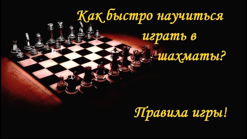 Как быстро научиться играть в шахматы Правила игры