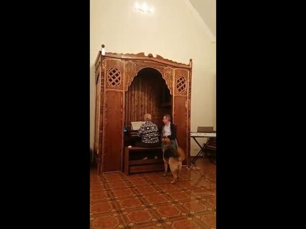 А вот и он-орган в деревне Богатово