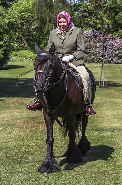 Фото дня: королева Елизавета II верхом на пони в Виндзорском замке
