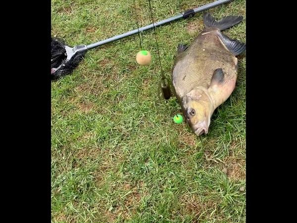 Рыбалка и отдых ранней весной на Карпа Леща