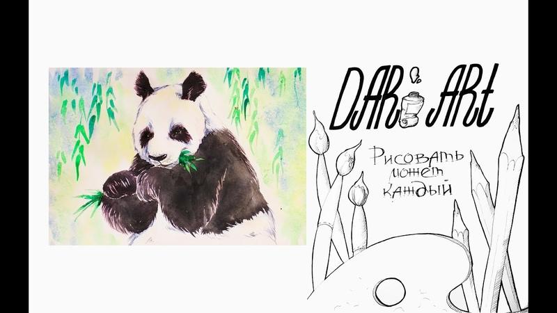 Как нарисовать панду акварелью Dari Art рисоватьМОЖЕТкаждый