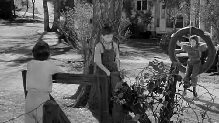 1962 Matar a un Ruiseñor HD Robert Mulligan