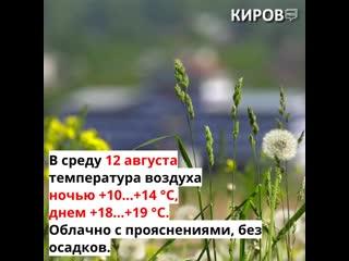 Прогноз погоды на 11, 12 и 13 августа