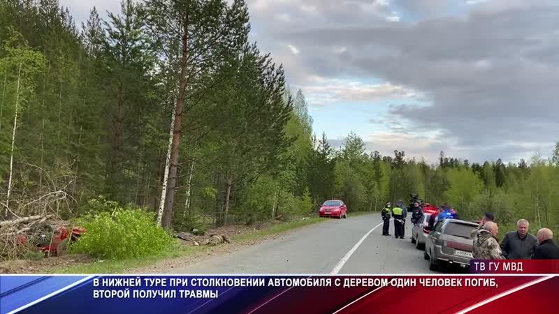 В Нижней Туре 'Форд Мустанг' влетел в дерево Один человек погиб в ДТП mp4