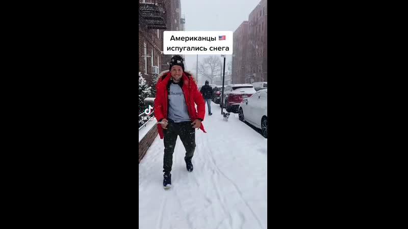 Американцы испугались снега