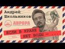 Стратегия Иудейского проекта Андрей Школьников
