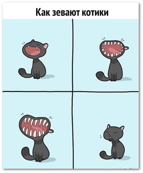 Теперь понятно, почему не все женщины любят, когда их называют котиком Наверное, мысленно они сразу примеряют на себя дьявольский кошачий зев, а это - слетевшие заколки, порванные губы и на