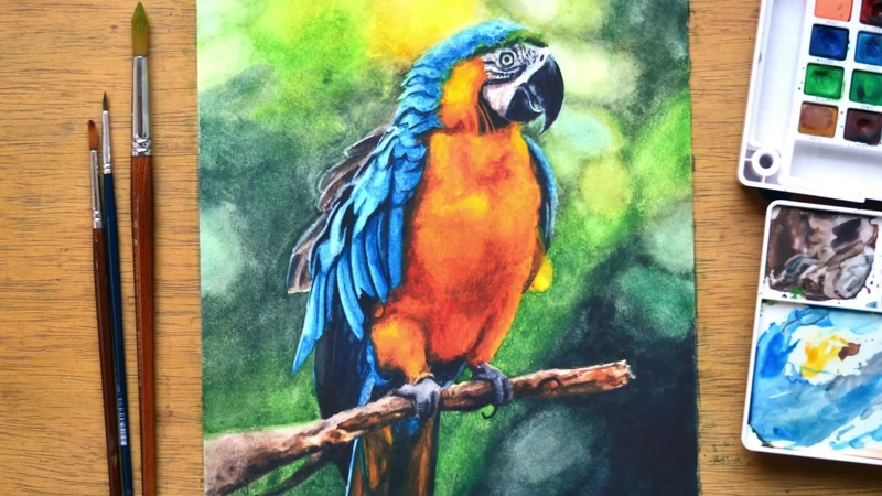 Painting Realistic Parrot in Watercolor