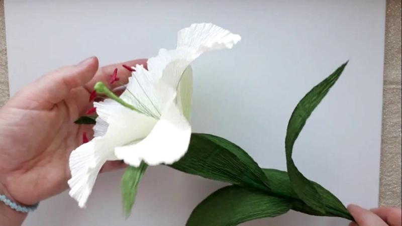 лилия из гофрированной бумаги diy paper lily
