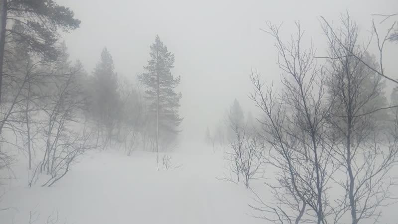 Буря собирается. Неподалеку от озера Новое VID_20200328_172536