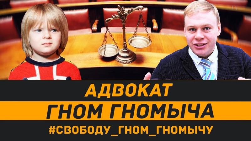 Адвокат Гном Гномыч Жизнь после поправок