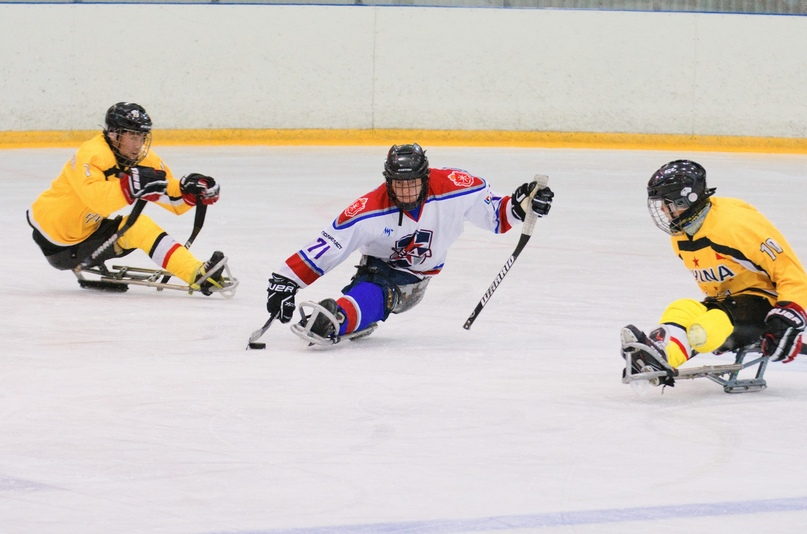 Международный матч по следж-хоккею между «Звездой» ( Тульская область) и сборной Китая