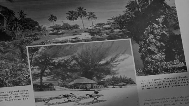 1950-La jungla de asfalto