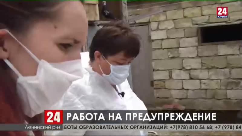 В Ленинском районе ветеринары привили от сибирской язвы почти пятнадцать тысяч животных