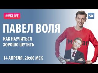 #VKlive: Павел Воля. Как научиться шутить