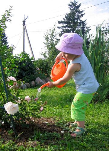 КАЖДОМУ ОВОЩУ СВОЙ ПОЛИВ Каждый садовод-любитель точно знает, насколько от правильного полива зависит будущий урожай, причем, не только количество, но и качество овощей и фруктов. А начинающим
