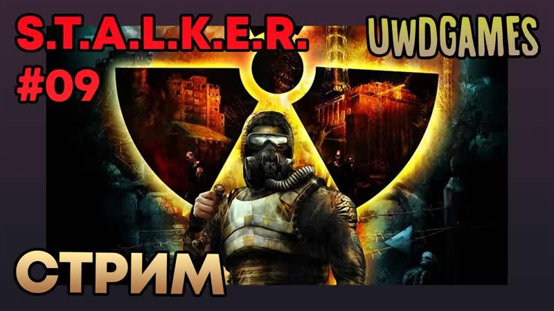 S.T.A.L.K.E.R. 09 (Shadow of Chernobyl) — Припять (Master challenge)