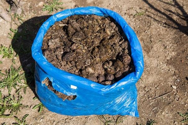 Органические удобрения: особенности использования.