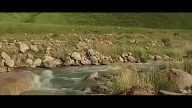 назарбаев снял клип на песню, которую сам сочинил. Лавры бердымухамедова не дают покоя