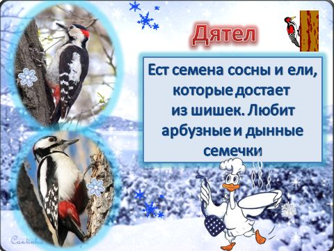 ПОКОРМИТЕ ПТИЦ ЗИМОЙ Покормите птиц зимой. Пусть со всех концов К вам слетятся, как домой, Стайки на крыльцо. Не богаты их корма. Горсть зерна нужна, Горсть одна И не страшна Будет им зима.