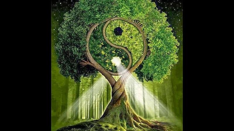 Пророки иных и наших дней и законы, придуманные ими. Единственная религия Любви и Единая Душа Рода.