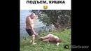Смешные видео с пьяными. Приколы с животными и детьми. Драки алкашей. Угарные видео с интернета Юмор
