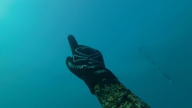 Так легко? Подводная охота.