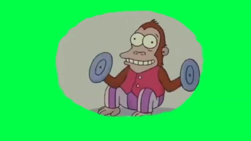 Обезьяна в голове Гомера Симпсона футаж на зелёном фоне хромакей симпсоны в кино мем вставка mp4
