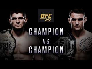 UFC 242: Хабиб vs Порье - Чемпион против чемпиона