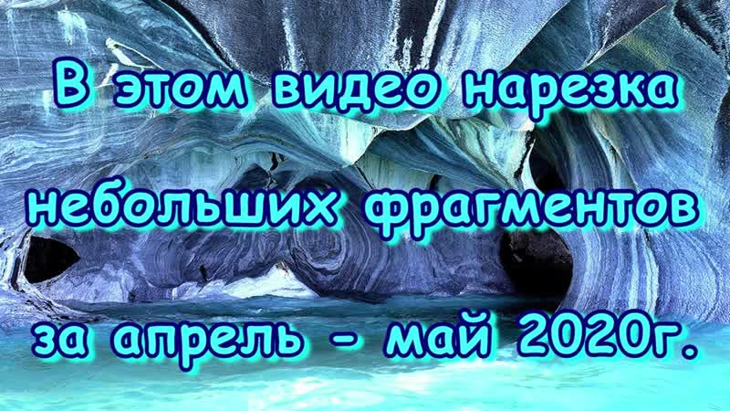 Наши занятия на СО Семейное образование Учимся дома Часть 39 05 20г Семья Бровченко