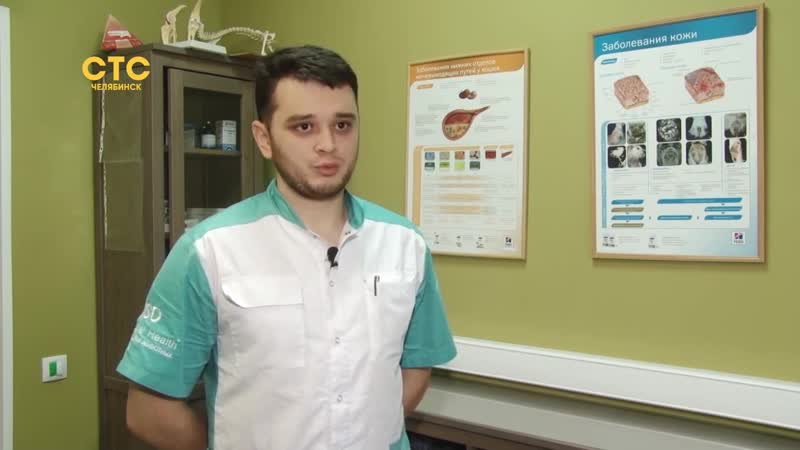 Спасти от эвтаназии_ ветеринар дает вторую жизнь хвостатым пациентам
