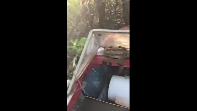 Парковка на катере