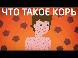Что такое Корь - делать прививку или нет | Kurzgesagt на русском | kvashenov