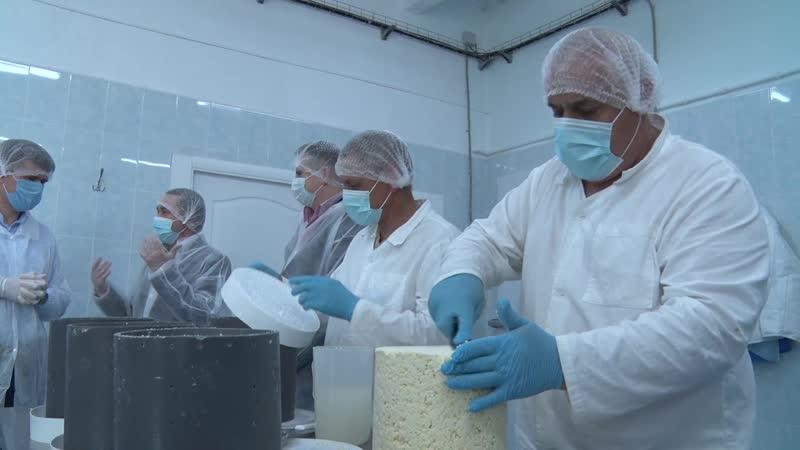 Премиальный сыр «Альдини» из деревни Соболево знают далеко за пределами Подмосковья и России.