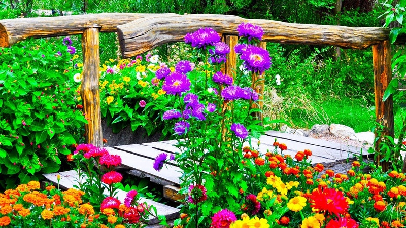 Relaxing Beautiful Music Peaceful Instrumental Music The Secret Garden of Peace by Tim Janis