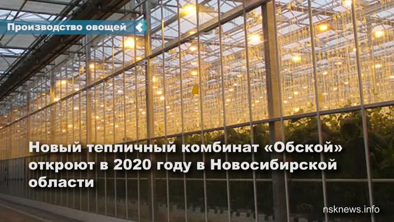 Новый тепличный комбинат Обской откроют в 2020 году в Новосибирской области