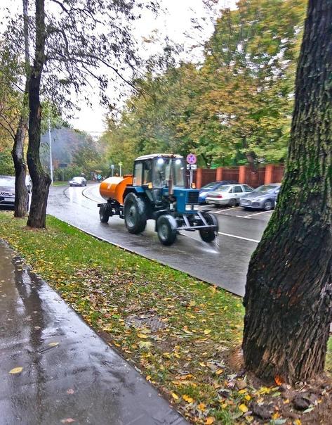 В столице который день идет дождь. Тем не менее то...