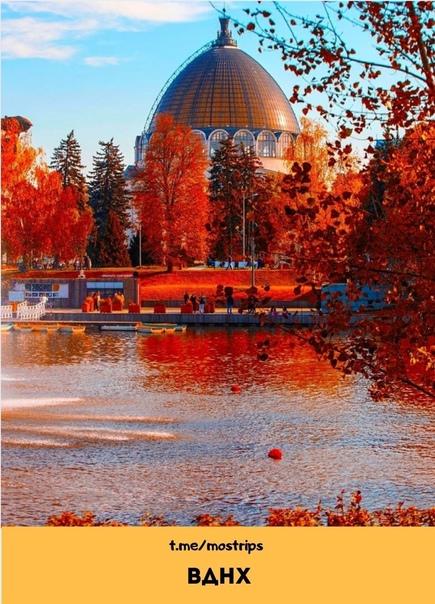 Куда идти в столице за самыми красивыми осенними ф...