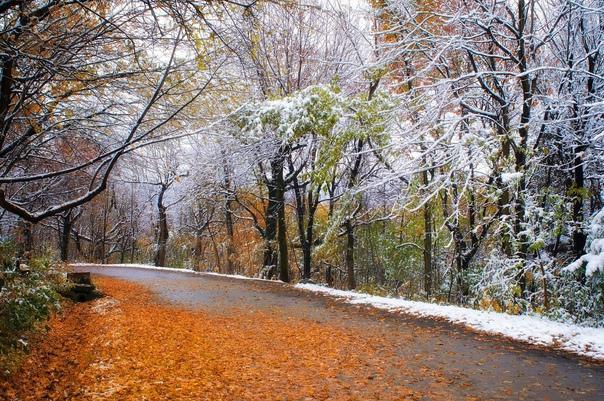 В Самарской области 20 октября выпадет снегСинопти...