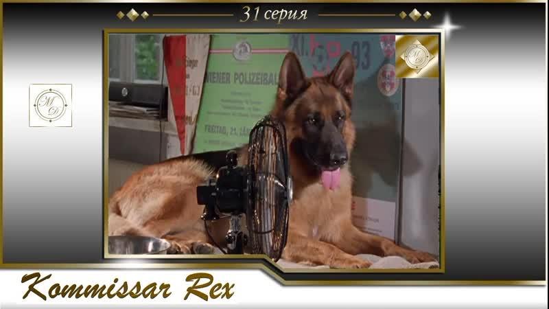 Komissar Rex 3x02 Комиссар Рекс 31 серия