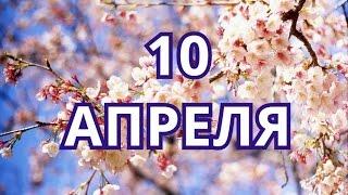 10 апреля День братьев и сестер и другие праздники