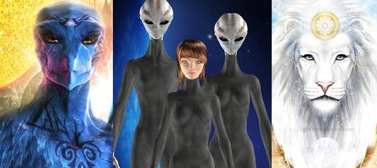 Тайные Космические Программы: контактёры с пришельцами | Паскаты, Рептилоиды, Серые, Авиане, Норды