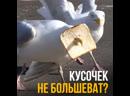 ДИКИЙ ИНСТИНКТ 9.0