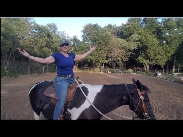 How to start Horseback riding Yoga ponyboy