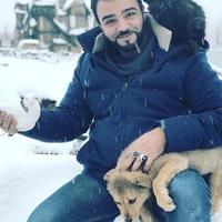 Мехди Эбрагими-Вафа