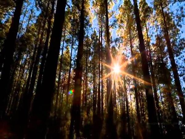 Безумно Красиво Мировые пейзажи Trance 2011 Borman Njoy presents