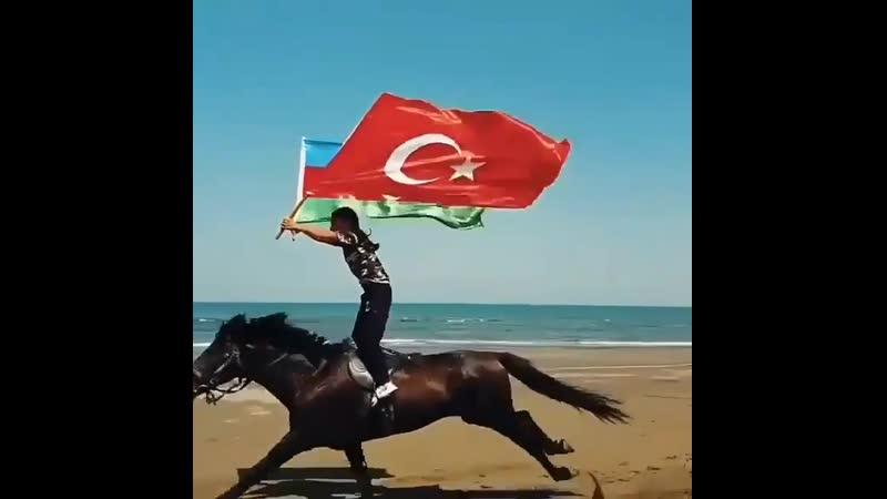 Elif__mirzakizi_20200324_2.mp4