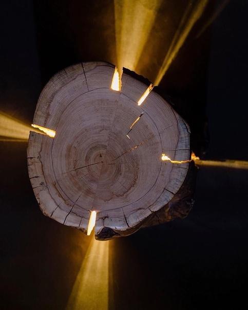 Необычные светильники из старых пней