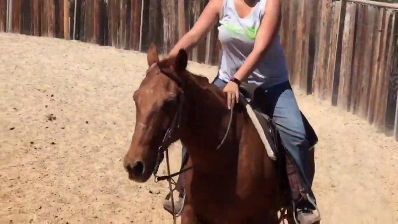 RC and Laurel ride ponyboy