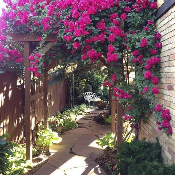 Подобрали красивые идеи для оформления сада.